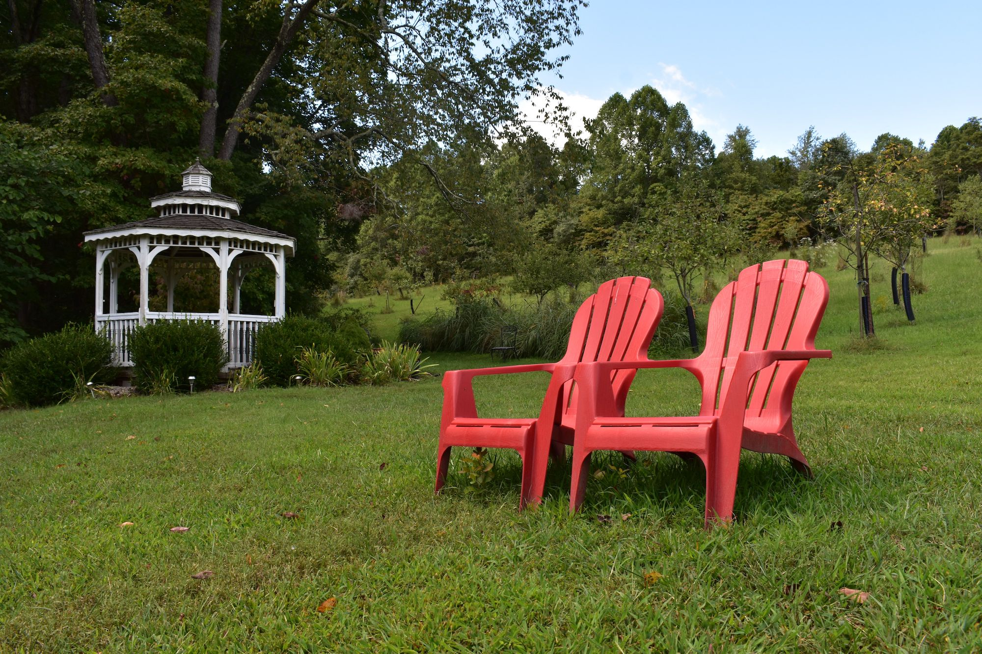 Chairs overlooking gazebo and apple orchard